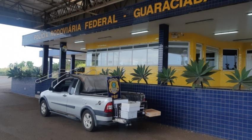 PRF apreende 40 caixas de vinho argentino em Guaraciaba, na BR 163