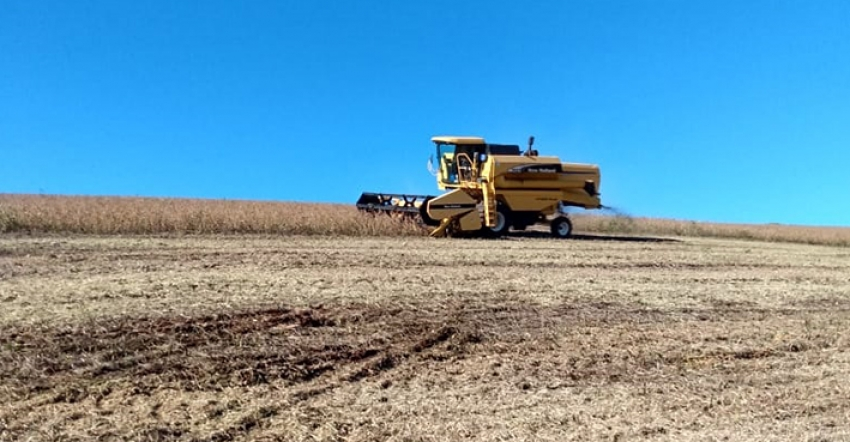 Ano de 2021 deve ter safra recorde de grãos