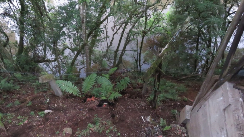 Corpo em avançado estado de decomposição é encontrado às margens de rio