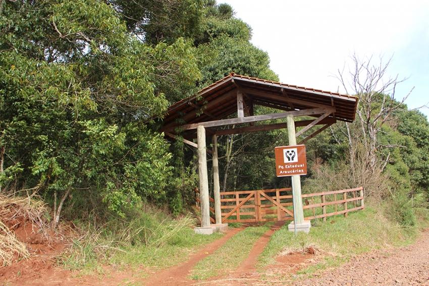 Parque Estadual das Araucárias volta a receber o público partir desta quinta-feira em São Domingos