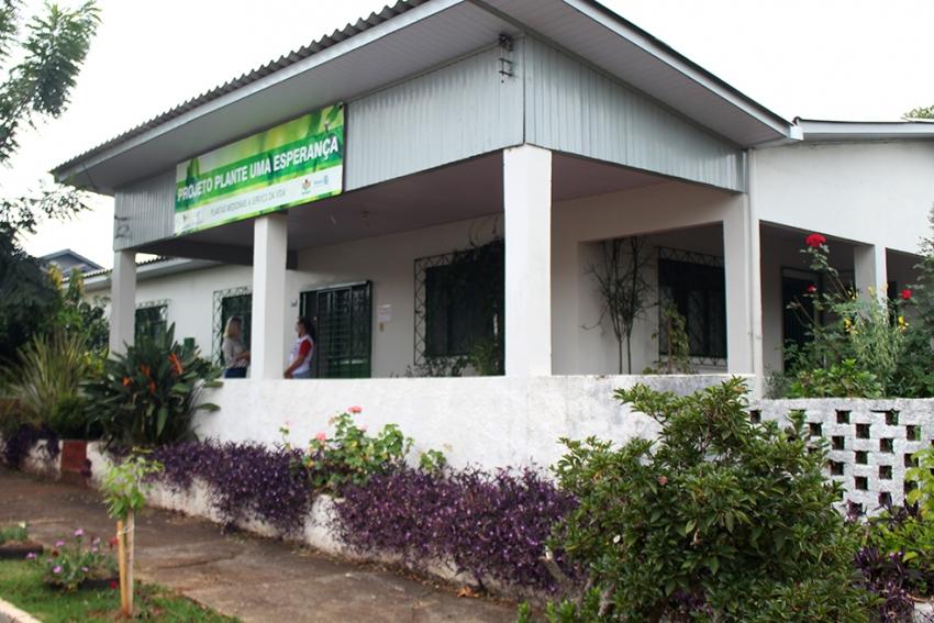 Projeto Plante uma Esperança fará distribuição de mudas em São Domingos