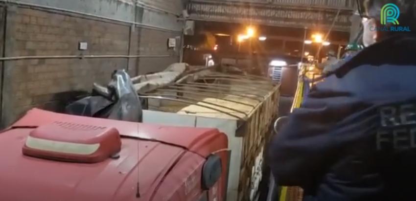 Fraude em carga de soja é descoberta no Porto de Rio Grande, no RS