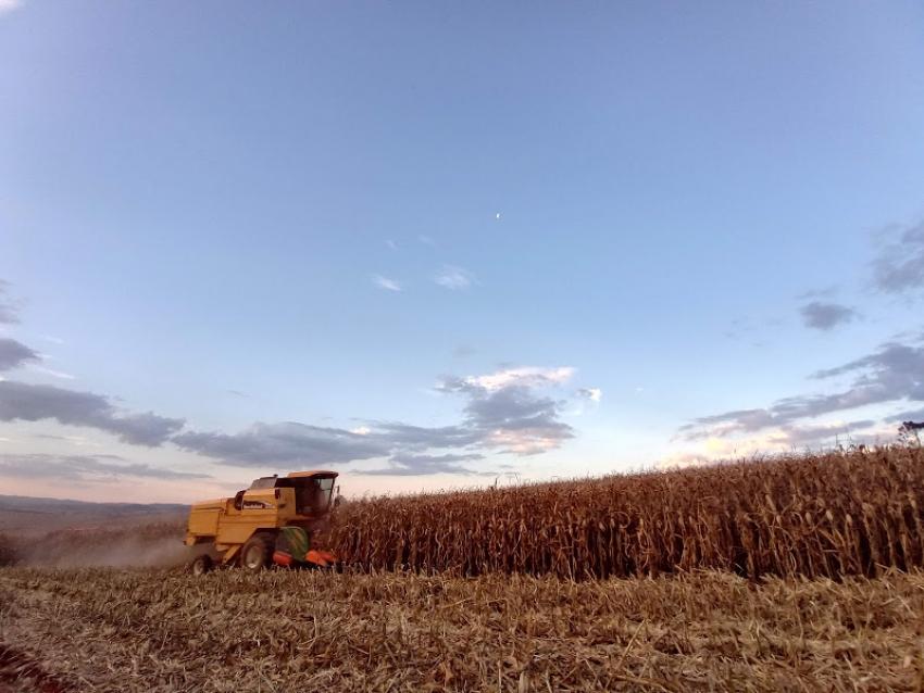 Governo de Santa Catarina cria Grupo de Trabalho para dar agilidade à Rota do Milho
