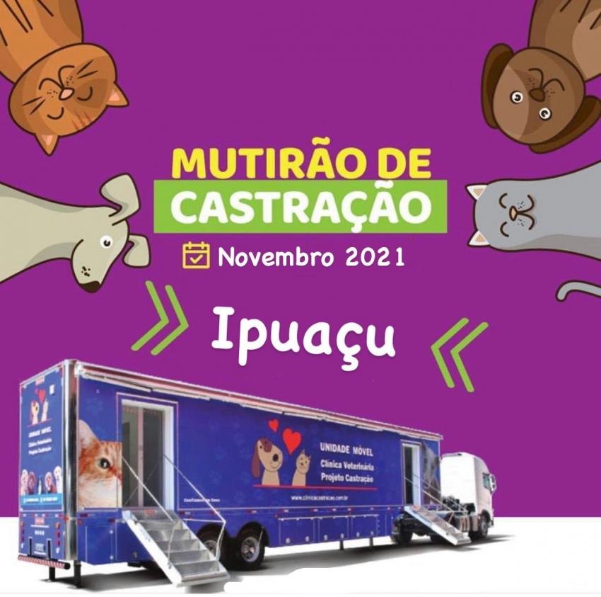 Programa Permanente de Educação em Saúde e Controle Reprodutivo de Cães e Gatos de Ipuaçu