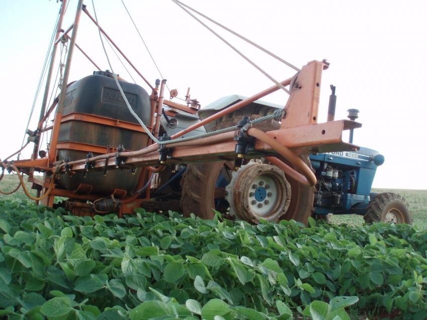 Plantas daninhas: problema que brota nos campos e derruba a produtividade