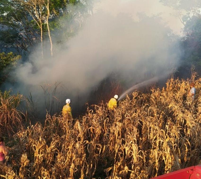 Plantação de milho pega fogo no interior de Quilombo